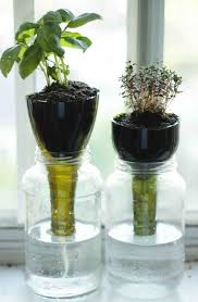 25 awesome indoor garden herb diy ideas 6