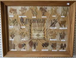 Navajo Dye Chart Navajo Dye Chart