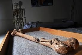 limb pit archaeologists make an extraordinary find of civil war solrs bones in manassas the washington post
