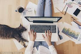 working for home office.  Home Those Who Work From Home Put In More Hours Than If They Were The Office To Working For Home Office O