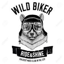 Bear T Shirt Design Vintage Images Of Black Bear For T Shirt Design For Motorcycle