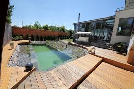 diy natural swimming pond finished