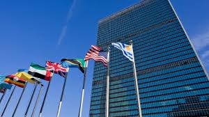 Image result for multiple blue united nations flags