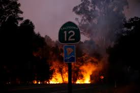 Image result for wildfires