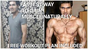 fastest way to build muscle naturally free workout plan included