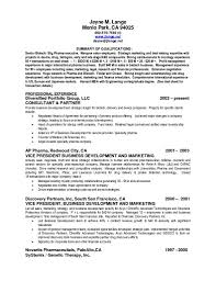 Summary Resumes Examples Creative Resume Ideas