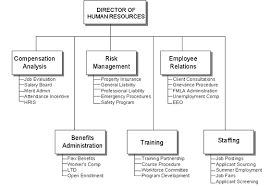 Human Resources Department Structure Hr Staff Organizational