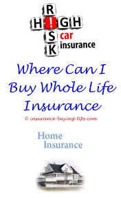 No Medical Exam Life Insurance Quotes Interesting New Life Insurance Quotes No Medical Exam 48 Best How To Buy