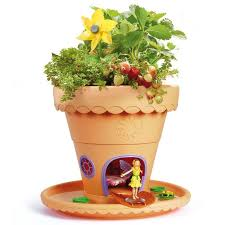 my fairy garden fairy garden flower pot amp