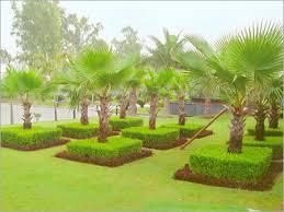 Indian Garden Design - Home Design