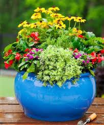 Flower Garden Designs For Full Sun Home Decorating Ideas And Tips Container Garden Ideas Full Sun