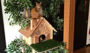 by making a cat tree diy outdoor house indoor plans new natural looking