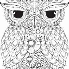 Ingenious Cute Hard Coloring Pages Copy Owl For Adults Printable