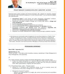 Mckinsey Resume Template Download Resume Sample Mckinsey And Company
