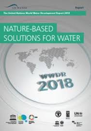 Who world water day report