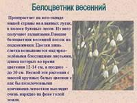 Реферат на тему Животные и растения Красной книги страница  Орешниковая соня Веретеница ломкая Белоцветник весенний