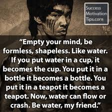 Bruce Lee Water Quote Impressive 48bruceleewaterquote Success Toro