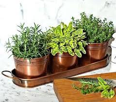 indoor kitchen garden. Kitchen Garden Planter Surprising Idea Indoor Herb Delightful Decoration Ideas .