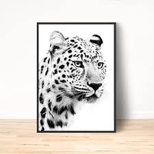white leopard poster animal wall