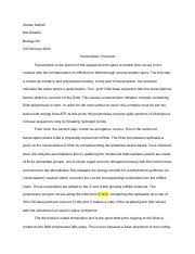 dna replication essay steven martell mrs beattie biology ib i  2 pages transcription short essay