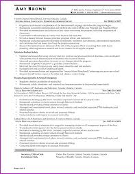 Best Ironworker Resume Skills Ideas Example Resume And Template