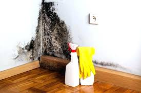 how to remove mold from inside walls how to remove mold from inside walls remove mould from walls and ceilings remove mold walls bathroom