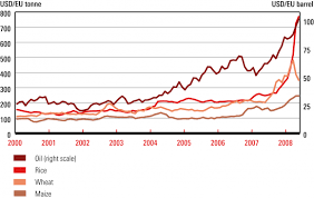 the food crisis and food security towards a new world food order figure 4 world commodity prices 2000 2008