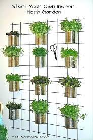 herb wall garden indoor wall herb garden wall garden indoor interior vertical garden indoor herb vertical