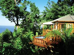 luxurious tree house hotel. Nice Tree House Mansion Luxurious Hotel