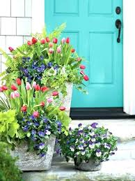 porch plant ideas porch planter ideas concrete planters with blooming tulips and pansies front porch container