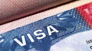 Kết quả hình ảnh cho visa nigeria