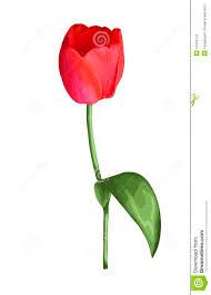 Fleurs Dessin Rose Couleurl Duilawyerlosangeles Fleurs Dessin Rose CouleurL