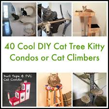 do you have a cat if you are a diy fan then we bet you re going to be thrilled to know there are lots of projects out there especially for cat