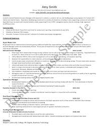 account manager resume sample resume ease project description