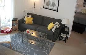 studio living room furniture. Fresh Living Room Medium Size Apartment Ideas Delightful Apt  Decor Bedroom Apartment Cute Studio Living Room Furniture