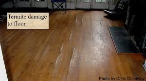 termite damage floor photos