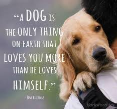 Quotes About Dog Friendship