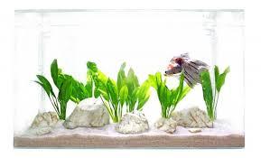 Aquarium Size Chart Goldfish Blog Puregoldfish Com