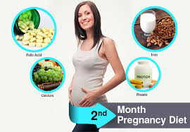 Month Wise Pregnancy Diet Chart In Hindi 2nd Month Pregnancy Diet What To Eat And Avoid