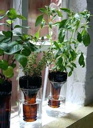 tote self watering tomato planters pots small make container gardening easy containers diy