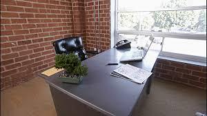 office bonsai. Mini Bonsai Trees Office