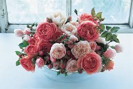 best david austin roses david austin roses for cutting great roses top roses