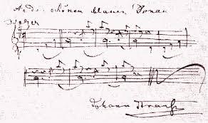 「1867年 - ヨハン・シュトラウス2世のワルツ『美しく青きドナウ』」の画像検索結果