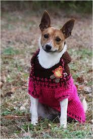 Dog Sweater Crochet Pattern Magnificent Crochet Dog Sweaters Free Crochet Patterns Video Tutorials