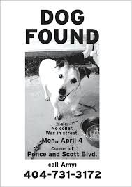 lost and found flyers lost dog template 8 best images of lost flyer template lost pet