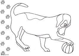 Disegno Da Colorare Cane Cat 5686 Images