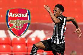 Newcastle open to Willock loan ...