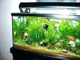 office desk fish tank. Creative Fish Tank Desk Office Stand Design Ideas