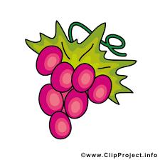 Weintrauben Bilder Clipart 3 Clipart Portal