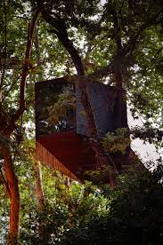 Exotic Tree Houses Large Tree Houses With Exotic Rectangular Box Shaped Design For